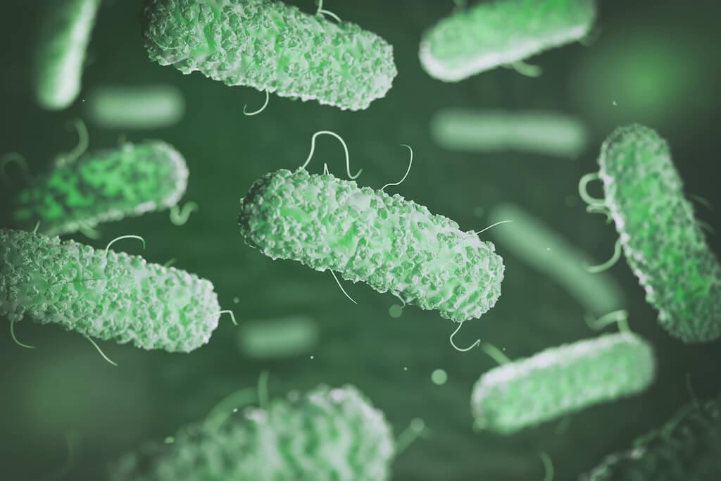 Potabilizzazione dell'acqua del pozzo batteri e virus