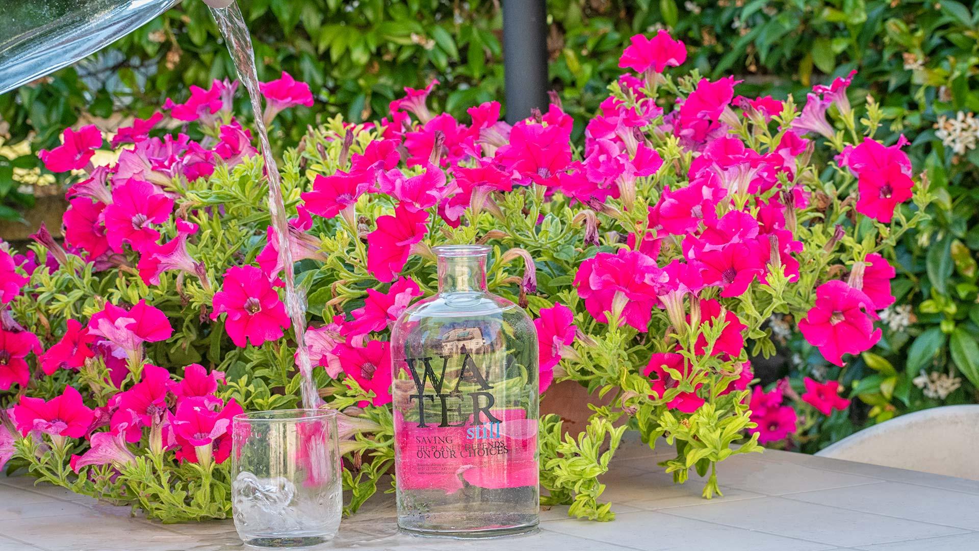 depurazione acqua domestica brocca acqua