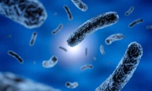 disinfezione dell'acqua i batteri e i virus